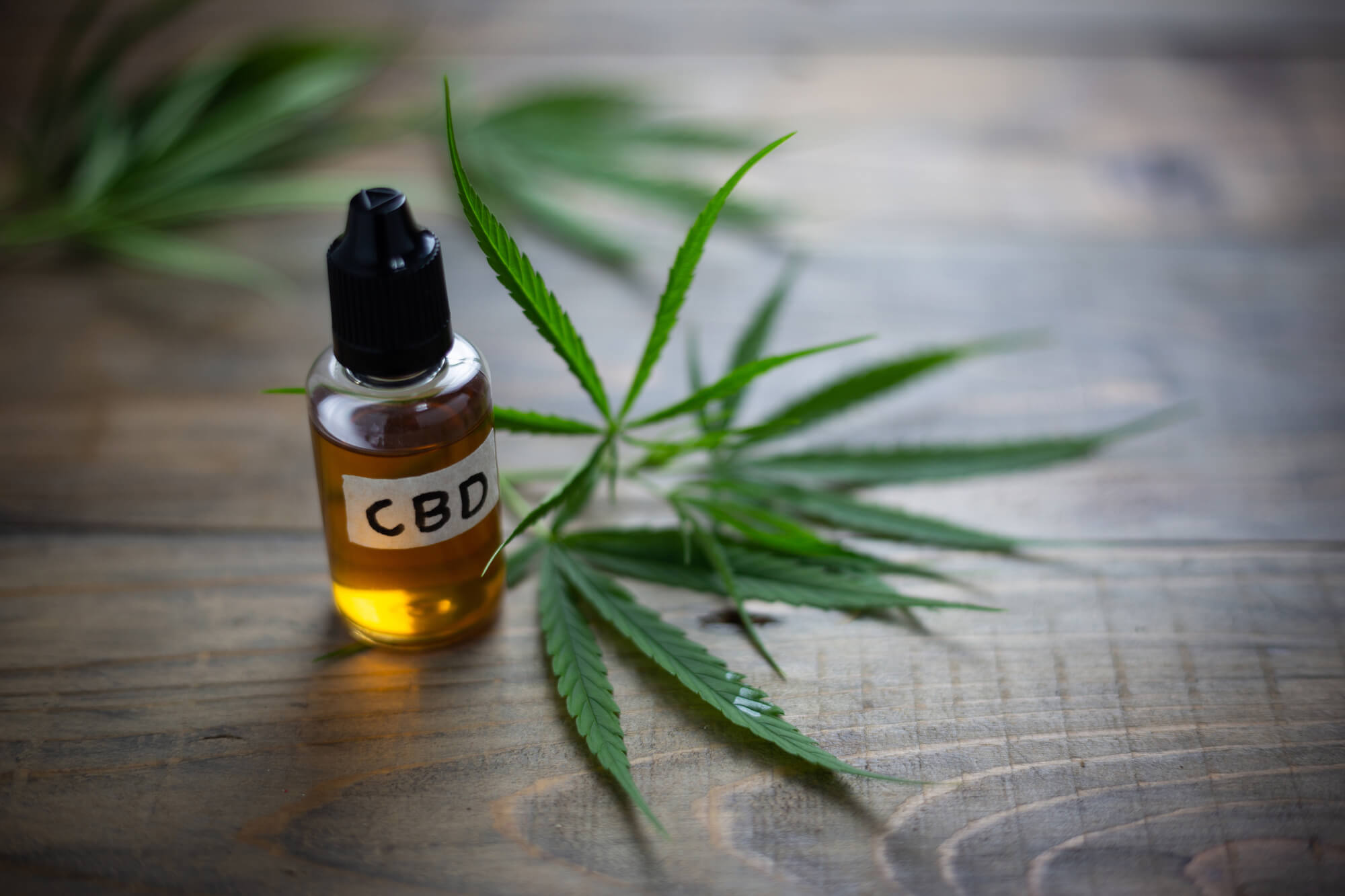 purchasing cbd oils